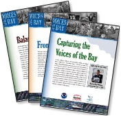 Voices Of The Bay Report